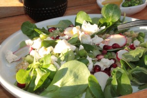 feta,mache, pomegranate, radishes, quinoa, peas and cocumber salad